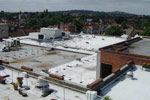 Marks and Spencer roof stock survey